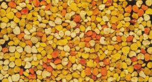 granulated bee pollen