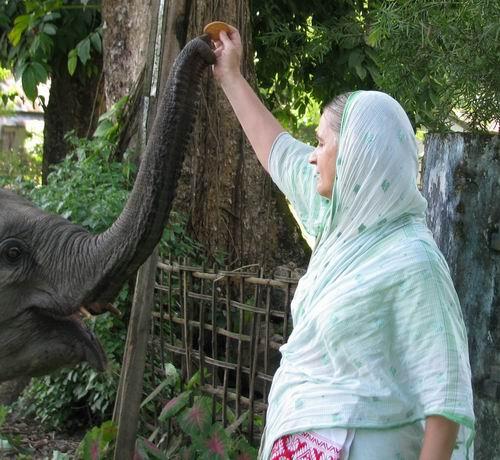 Visnupriya gets a biscuit from Hrmati mataji