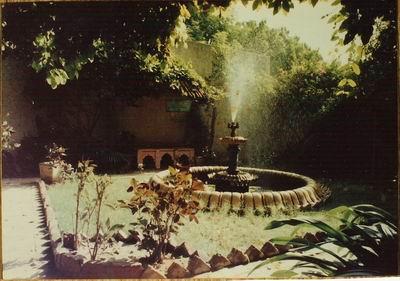 Prabhupada�s Vrndavana garden
