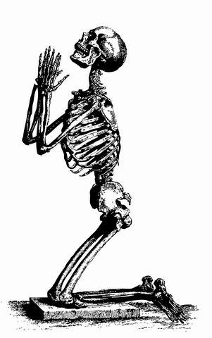 resize-of-skeleton.jpg